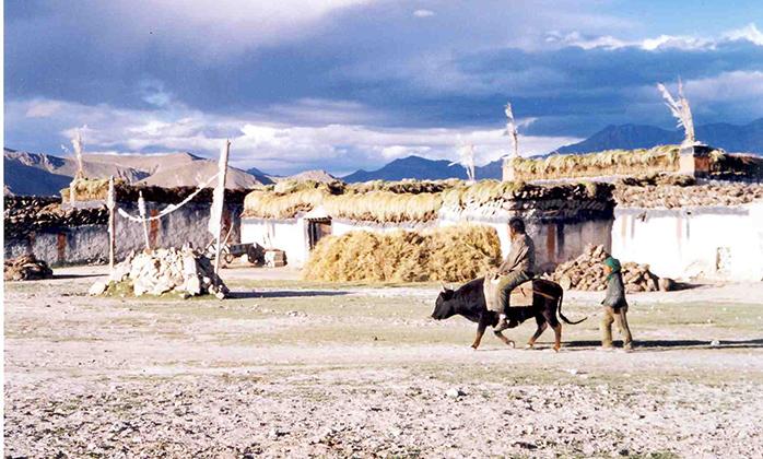 Overland Tibet Tour (4)