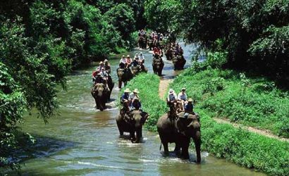 1-Night 2-Days Package Chitwan