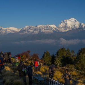 Comfort Annapurna & Chitwan Trip