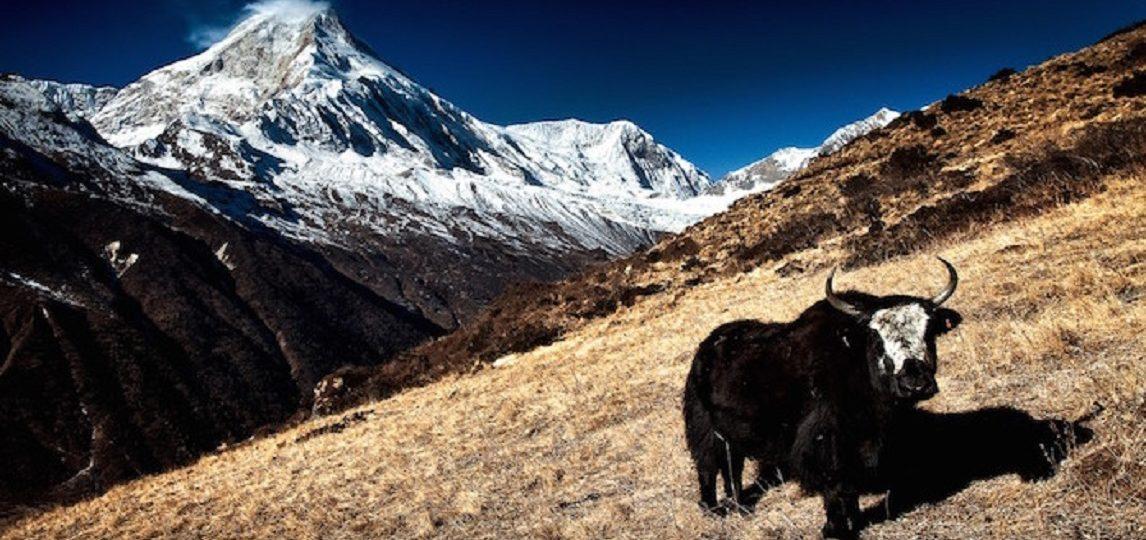 Nepal Resietipps